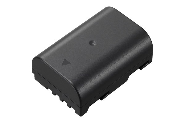 Panasonic Battery BLF19E