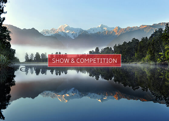 Show & Competition