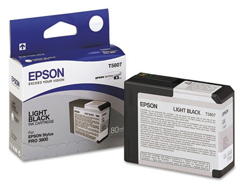 Epson Ink T580700 Light Black