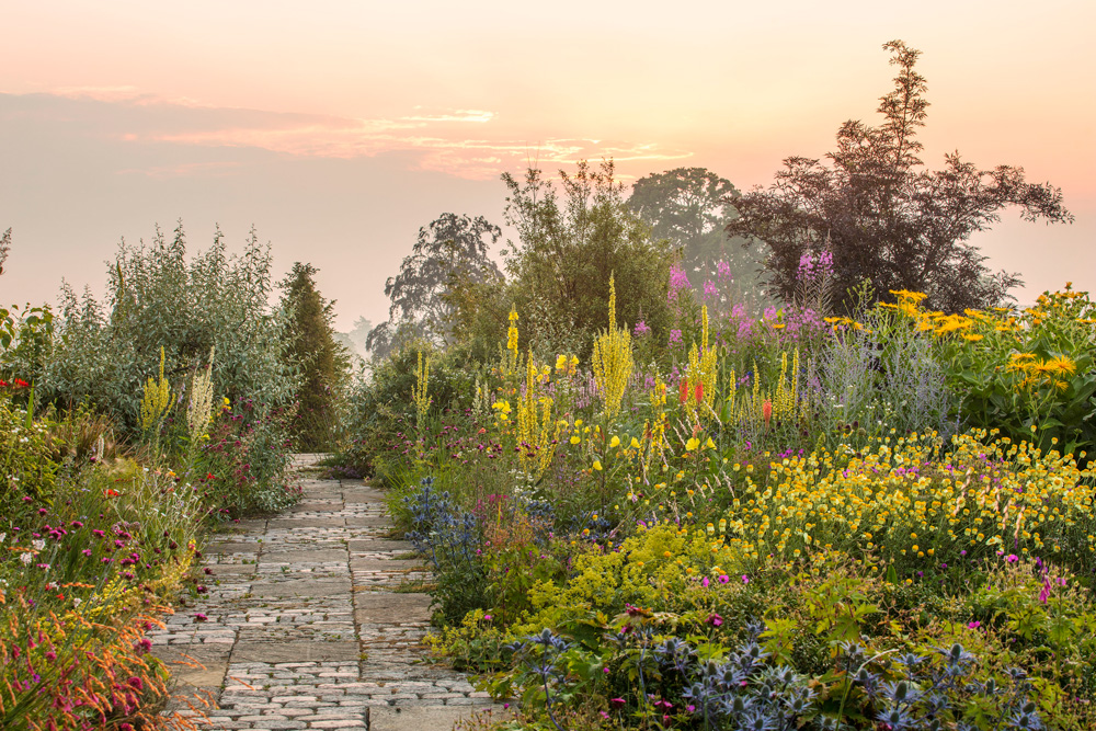garden landscape with sunset in the background